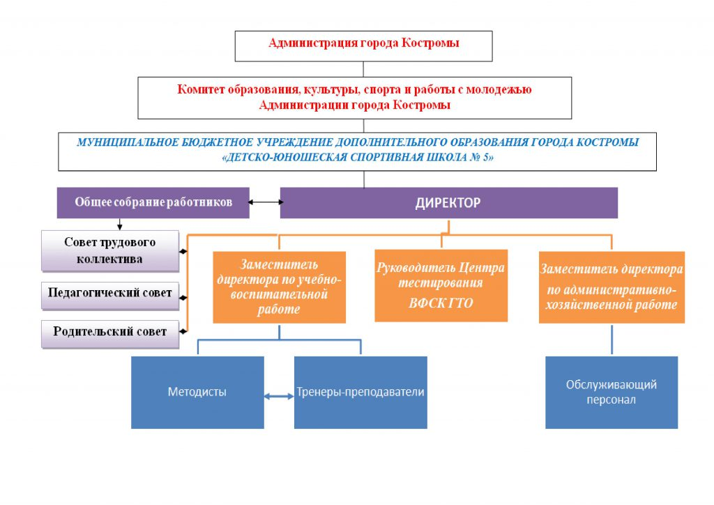 Структура школы